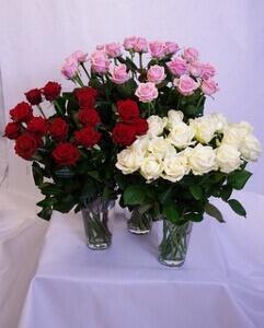 Keskipitkä ruusu