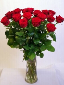 Pitkä ruusu