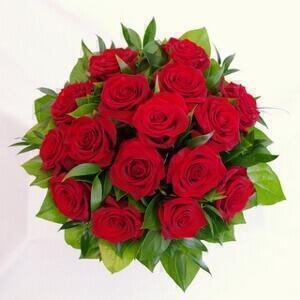 Matala kimppu ruusuista nro 204